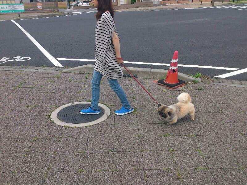 fc2blog_2012061213050967f.jpg