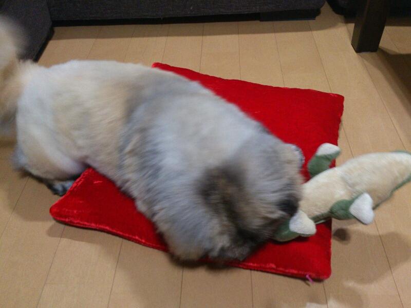 fc2blog_20120704220216444.jpg