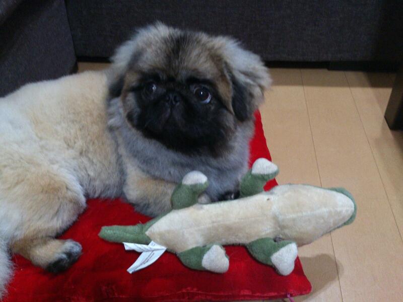 fc2blog_20120704220348fed.jpg