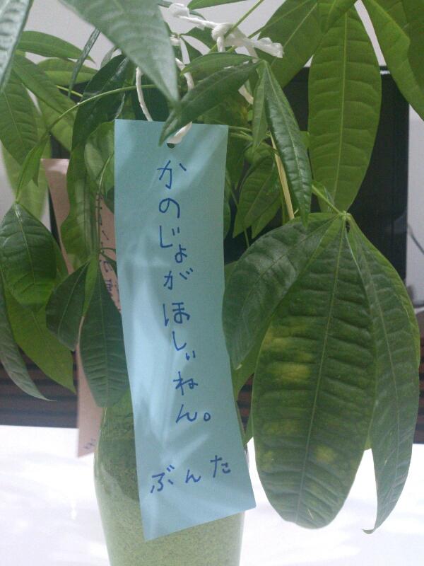fc2blog_2012070811153963c.jpg