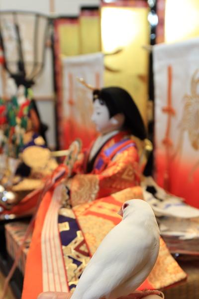 otituitara daijoubu mitai (4)