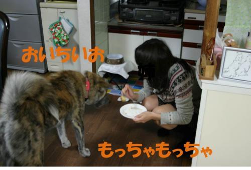 121123-10_convert_20121123224902.jpg