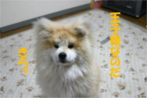 s-120601-6.jpg