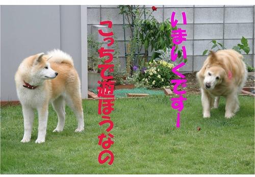 s-120705-10.jpg