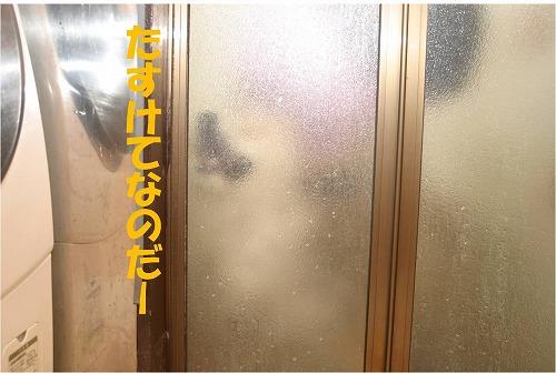 s-120713-1.jpg