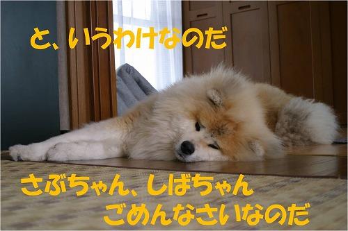 s-120718-7.jpg