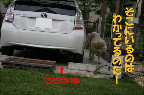 s-120908-5.jpg