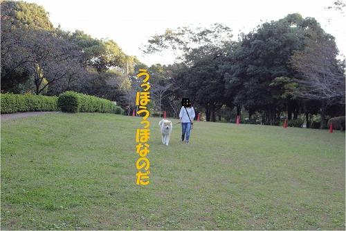 s-121108-5.jpg