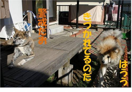 s-121203-10.jpg