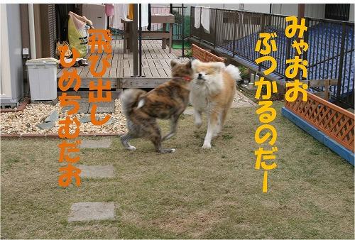 s-121210-5.jpg