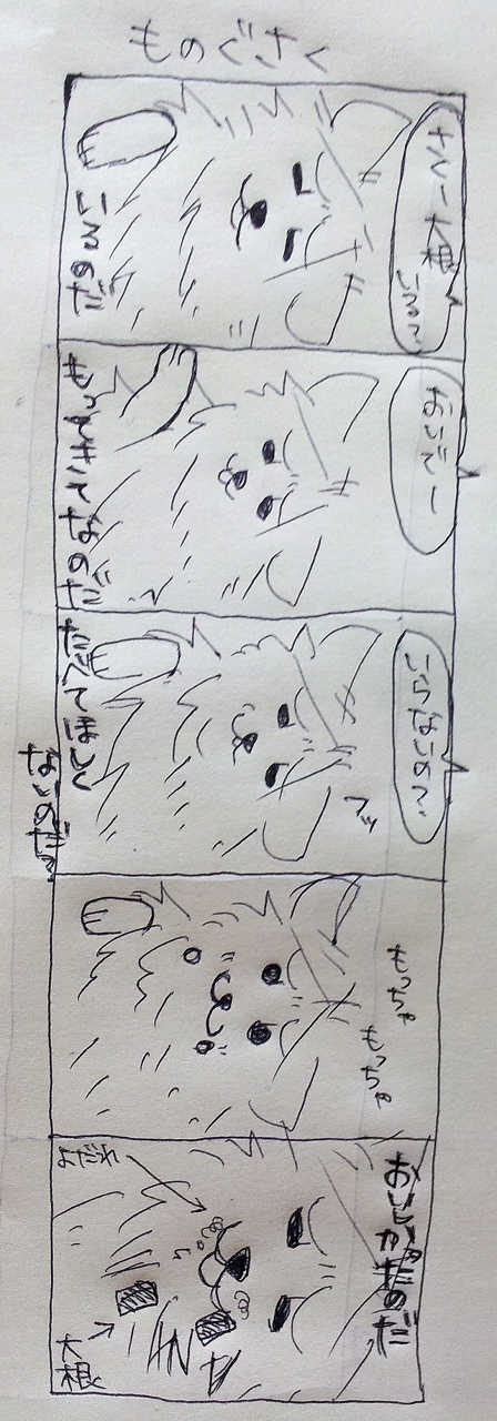s-20121222_211106.jpg