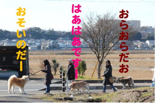 s130102-11.jpg
