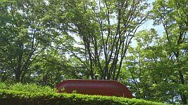 県立美術館 (4)
