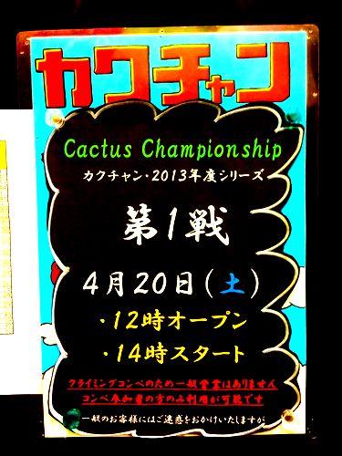2013カクチャン第1戦