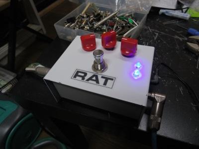 20140201-1white rat2 (2)