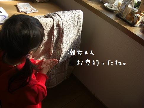 お参り-1