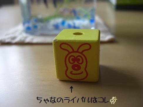 フントウ_チャナ(3)