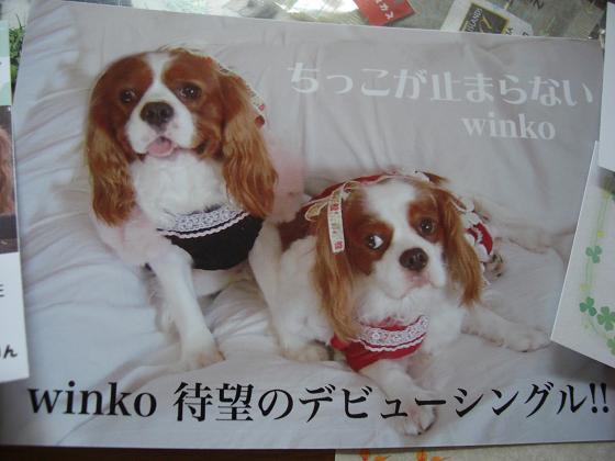 winko様~♪