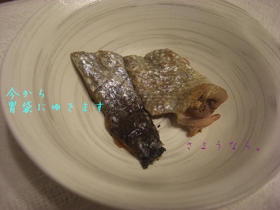メルうし日和 ~豆キャバリア・メルと潮の日記~-焼かれますた。