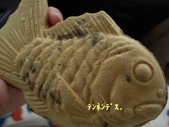 メルうし日和。*メルと潮の日々*-テンネン鯛焼き。