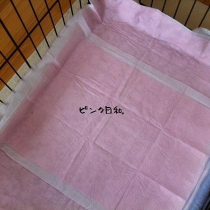メルうし日和。-03-201110-1