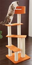 猫タワーオレンジ3