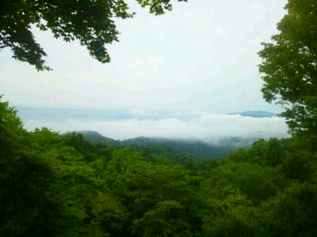 PhotoHenshu_20120624092643.jpg