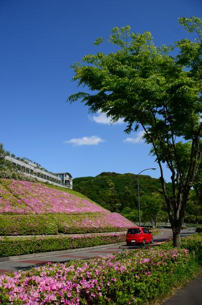 20130505kokusai008.jpg