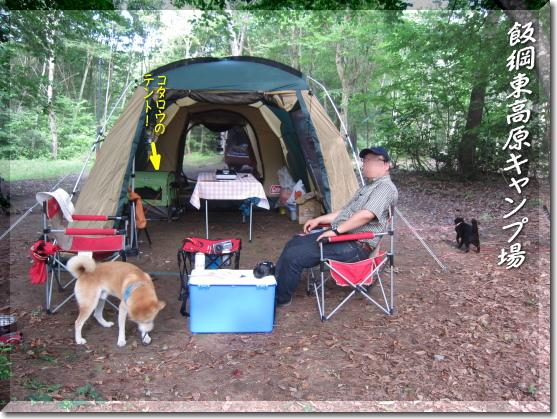 林間のテントサイト