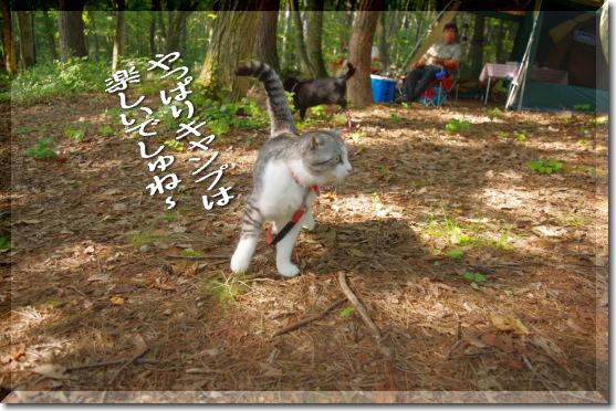 blog0805-8.jpg