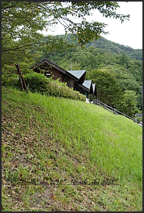 natuyasumi33.jpg