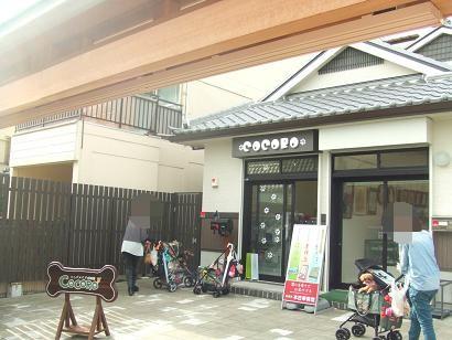 画像2012.7.21.奈良平城京 035