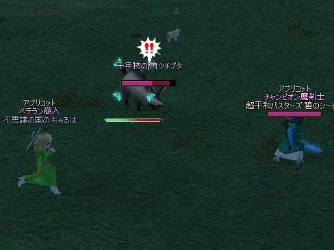 mabinogi_2013_01_02_009.jpg