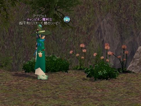 mabinogi_2013_02_13_006.jpg