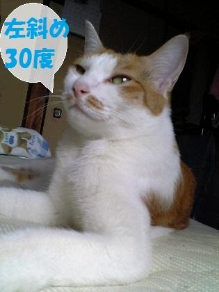 0001_20120705030711.jpg