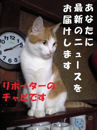 000_20120727235558.jpg