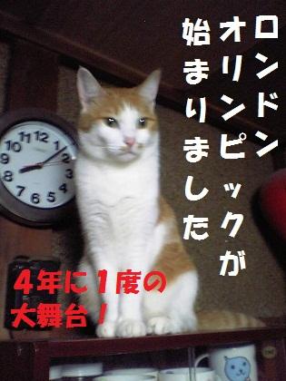 017_20120727234909.jpg