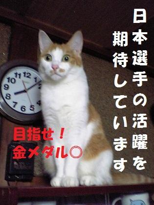 018_20120727234909.jpg