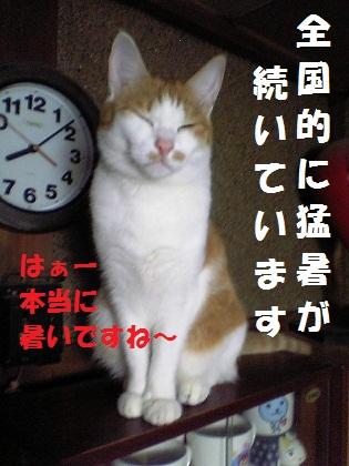 019_20120727233809.jpg
