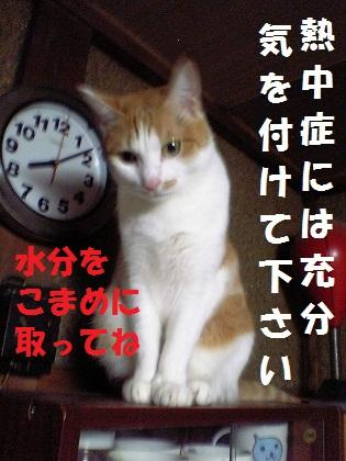 020_20120727233810.jpg