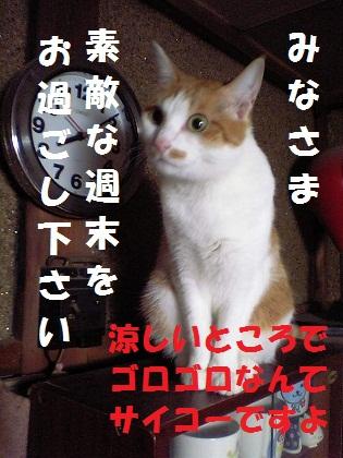 023_20120727234909.jpg