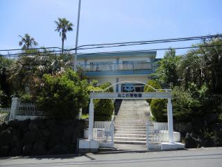 猫の博物館建物