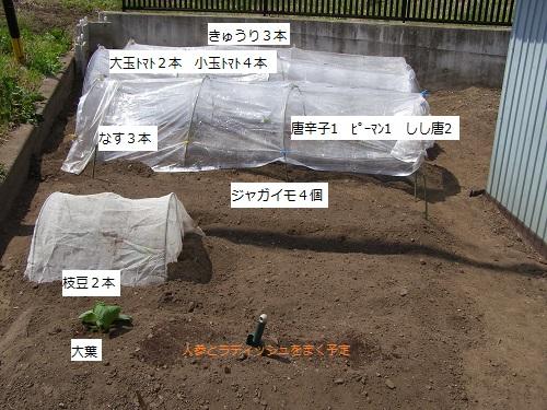 20130506畑