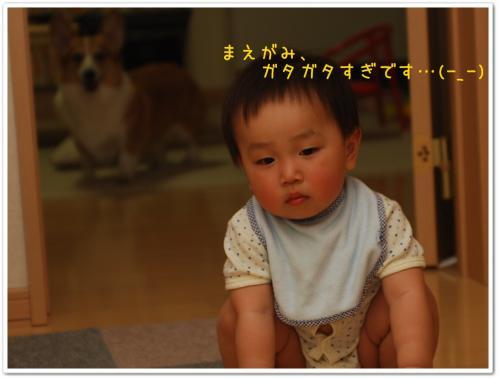 CSC_4342.jpg