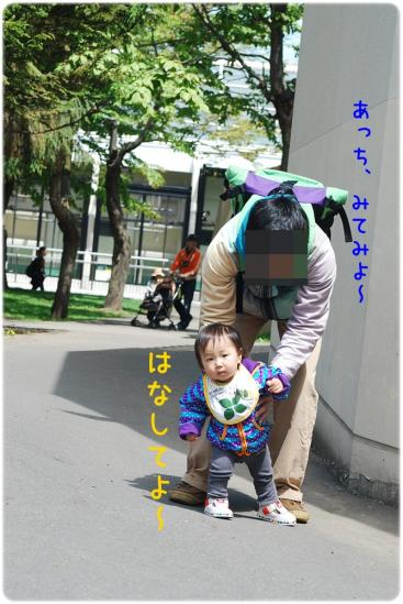 DSC_4230.jpg