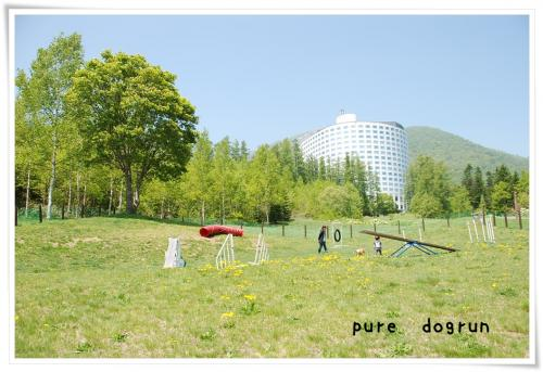 DSC_4516.jpg