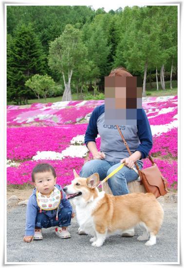 DSC_4635_20120610213259.jpg