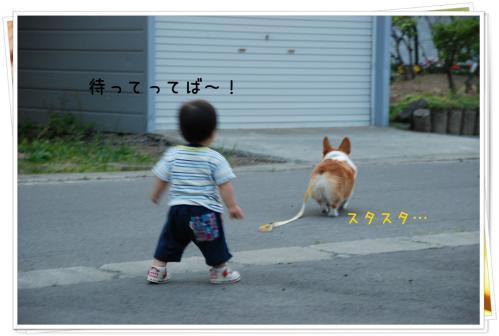 DSC_4883_20120704205823.jpg