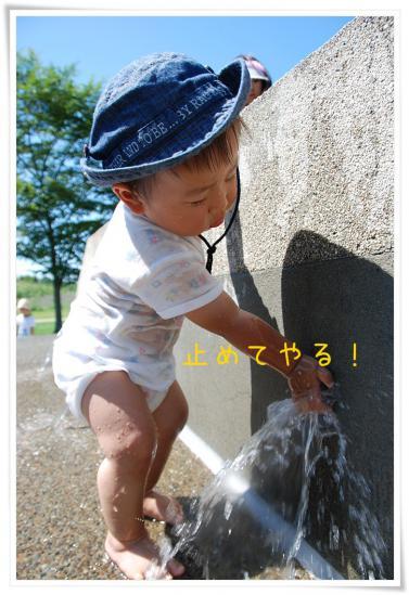 DSC_5598.jpg