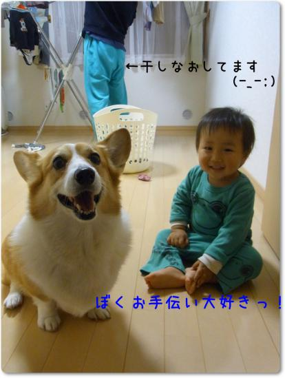 RIMG0712_20121022220016.jpg